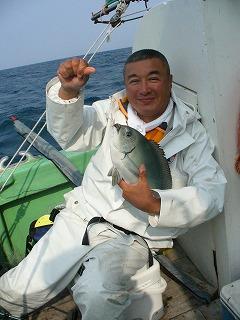 釣ったすぐのメジナは美しい。