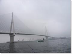 つばさ橋のすぐ近くです。